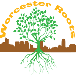Worcester Roots